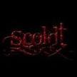 Scoldt