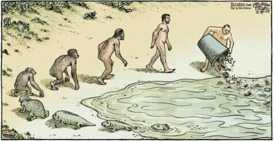 The Evolution Of Man Comic